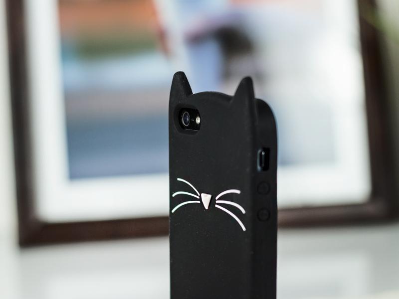 case uszy kota